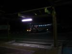 bus101114-3.JPG