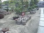 nozaki101113-5.JPG