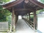 tofukuji101123-1.JPG